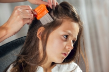 Head lice - it can happen to anyone!