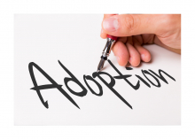 Steps to adoption